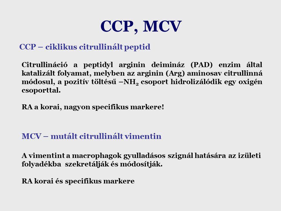 CCP, MCV CCP – ciklikus citrullinált peptid Citrullináció a peptidyl arginin deimináz (PAD) enzim által katalizált folyamat, melyben az arginin (Arg) aminosav citrullinná módosul, a pozitív töltésű –NH 2 csoport hidrolizálódik egy oxigén csoporttal.