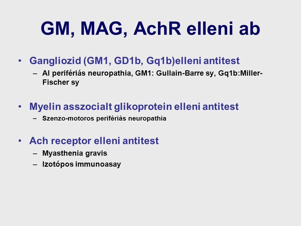 GM, MAG, AchR elleni ab Gangliozid (GM1, GD1b, Gq1b)elleni antitest –AI perifériás neuropathia, GM1: Gullain-Barre sy, Gq1b:Miller- Fischer sy Myelin asszocialt glikoprotein elleni antitest –Szenzo-motoros perifériás neuropathia Ach receptor elleni antitest –Myasthenia gravis –Izotópos immunoasay