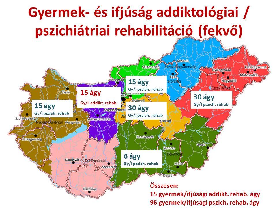 Gyermek- és ifjúság addiktológiai / pszichiátriai rehabilitáció (fekvő) 15 ágy Gy/I pszich.