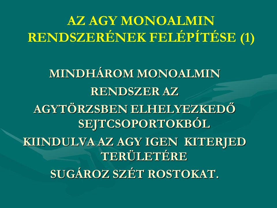 AZ AGY MONOALMIN RENDSZERÉNEK FELÉPÍTÉSE (1) MINDHÁROM MONOALMIN RENDSZER AZ AGYTÖRZSBEN ELHELYEZKEDŐ SEJTCSOPORTOKBÓL KIINDULVA AZ AGY IGEN KITERJED