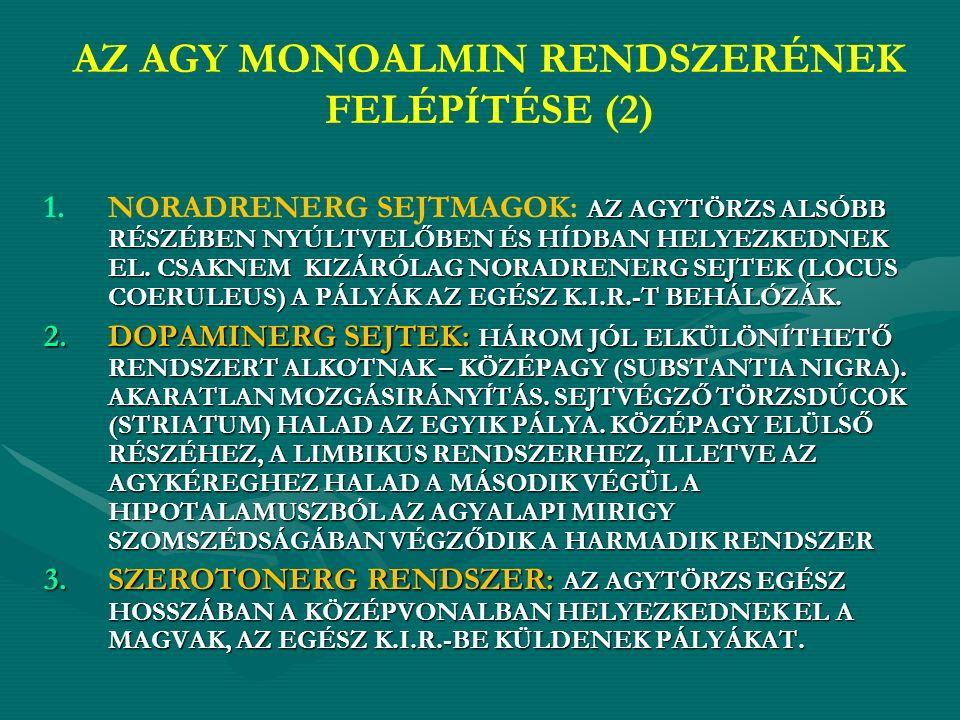 AZ AGY MONOALMIN RENDSZERÉNEK FELÉPÍTÉSE (2) 1.