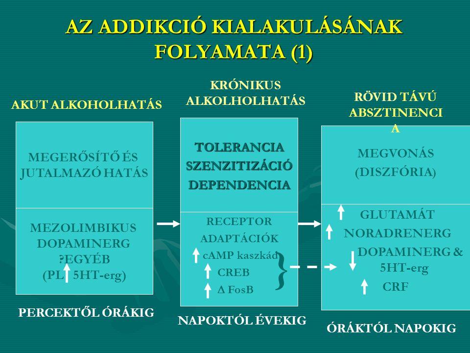 AZ ADDIKCIÓ KIALAKULÁSÁNAK FOLYAMATA (1) MEGERŐSÍTŐ ÉS JUTALMAZÓ HATÁS TOLERANCIASZENZITIZÁCIÓDEPENDENCIA MEGVONÁS (DISZFÓRIA ) MEZOLIMBIKUS DOPAMINERG EGYÉB (PL 5HT-erg) RECEPTOR ADAPTÁCIÓK cAMP kaszkád CREB  FosB PERCEKTŐL ÓRÁKIG NAPOKTÓL ÉVEKIG ÓRÁKTÓL NAPOKIG RÖVID TÁVÚ ABSZTINENCI A KRÓNIKUS ALKOLHOLHATÁS AKUT ALKOHOLHATÁS GLUTAMÁT NORADRENERG DOPAMINERG & 5HT-erg CRF }