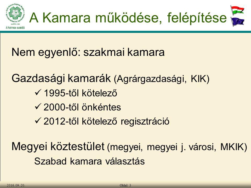 Oldal: 42016.09. 20. Tagozatok, térségek Kamara = tagvállalatok összessége.