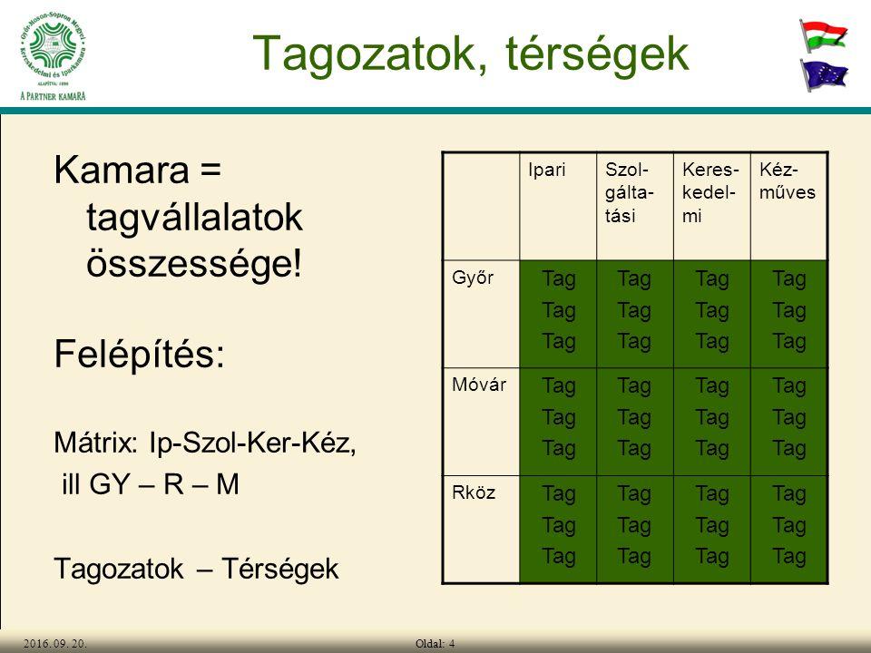 Oldal: 42016. 09. 20. Tagozatok, térségek Kamara = tagvállalatok összessége.