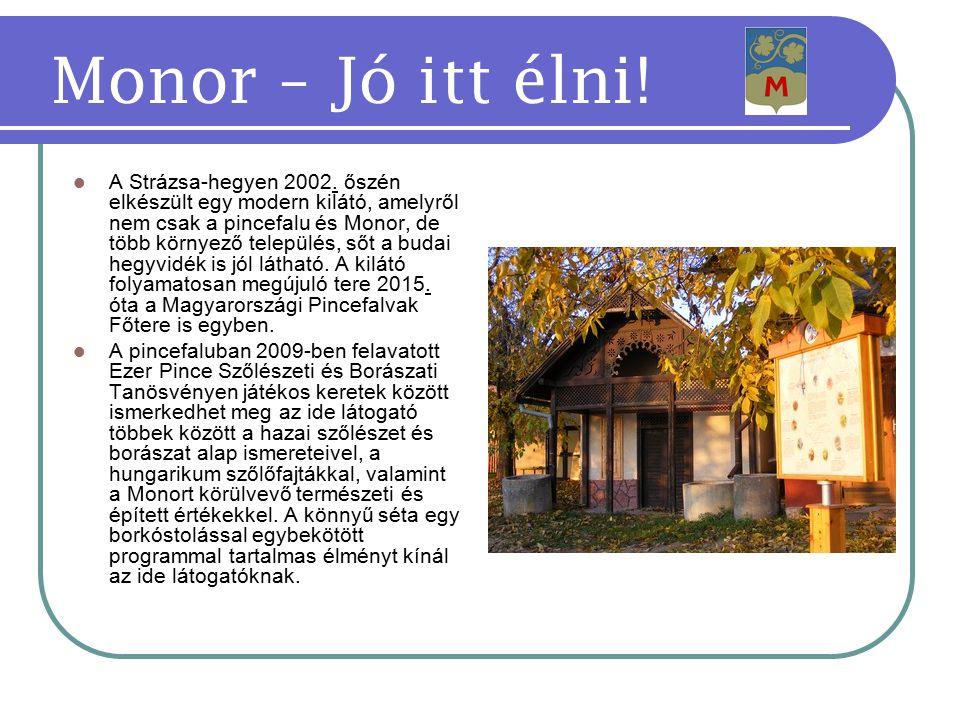 A Strázsa-hegyen 2002.
