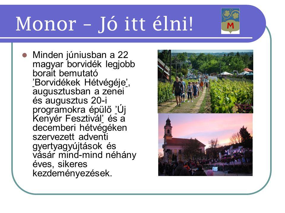 Minden júniusban a 22 magyar borvidék legjobb borait bemutató 'Borvidékek Hétvégéje', augusztusban a zenei és augusztus 20-i programokra épülő 'Új Kenyér Fesztivál' és a decemberi hétvégéken szervezett adventi gyertyagyújtások és vásár mind-mind néhány éves, sikeres kezdeményezések.