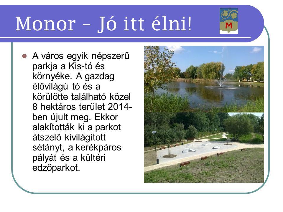 A város egyik népszerű parkja a Kis-tó és környéke.