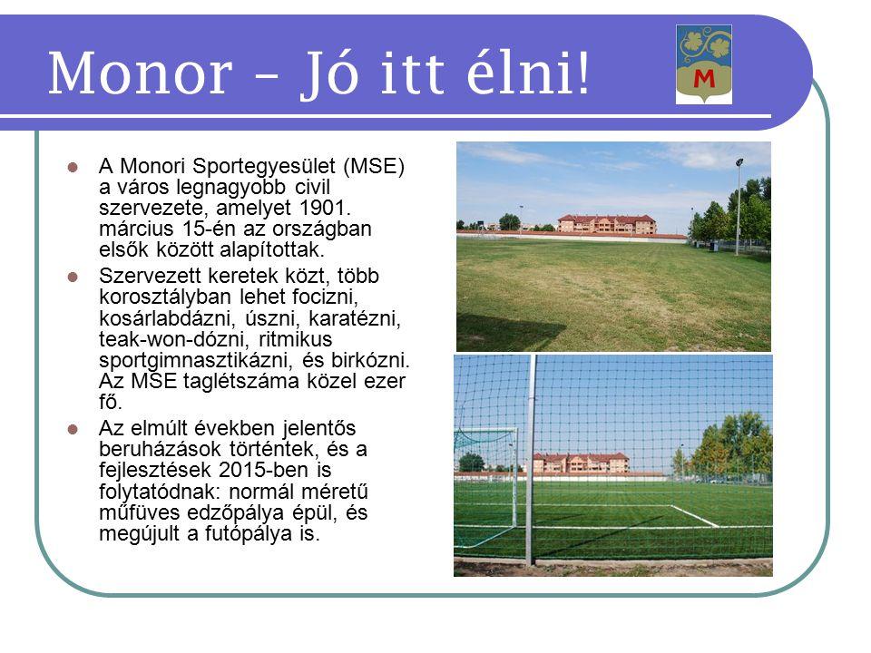 A Monori Sportegyesület (MSE) a város legnagyobb civil szervezete, amelyet 1901.