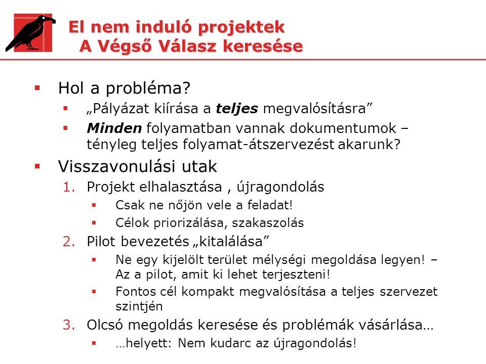 """El nem induló projektek A Végső Válasz keresése  Hol a probléma?  """"Pályázat kiírása a teljes megvalósításra""""  Minden folyamatban vannak dokumentumo"""