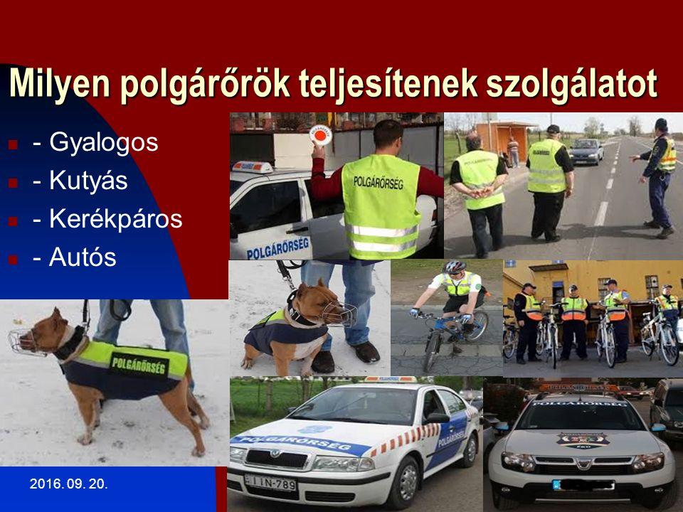 Milyen polgárőrök teljesítenek szolgálatot - Gyalogos - Kutyás - Kerékpáros - Autós 2016. 09. 20.14
