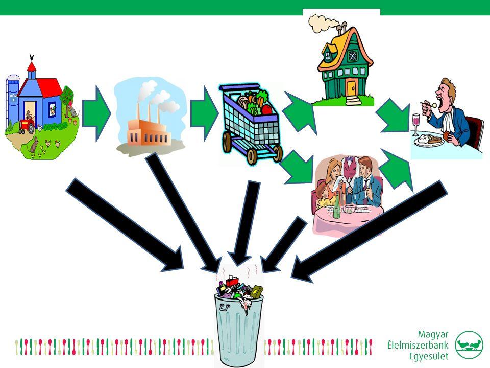 Nemzetközi Kapcsolatok  Élelmiszerbankok Európai Szövetség tagság  Európai Bizottság: aktív részvétel az élelmiszerpazarlással foglalkozó munkacsoport munkájában Brüsszelben 3 nemzetközi projekt:  Fusions: nemzetközi kutatás-fejlesztés program – témája: az élelmiszerpazarlás elleni küzdelem.