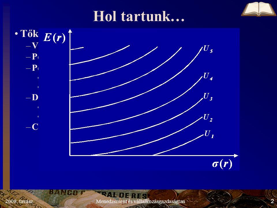 2008. tavasz3Menedzsment és vállalkozásgazdaságtan σ(r)σ(r) E(r)E(r) A B Hatékony portfóliók