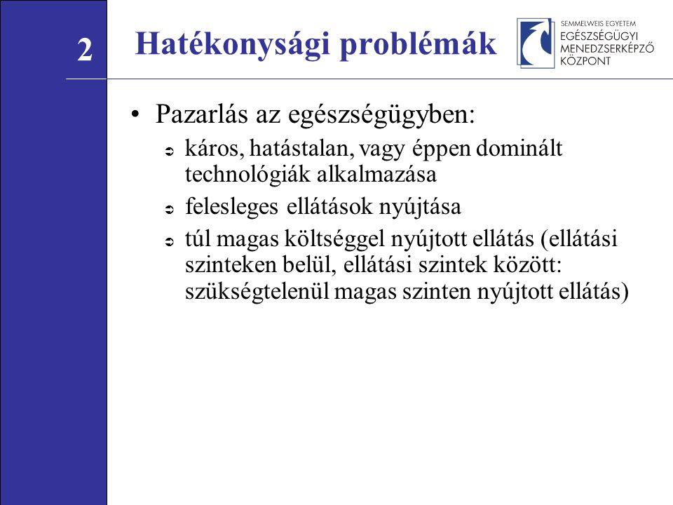 Hatékonysági problémák elemzése Mire vezethetőek vissza a hatékonysági problémák.