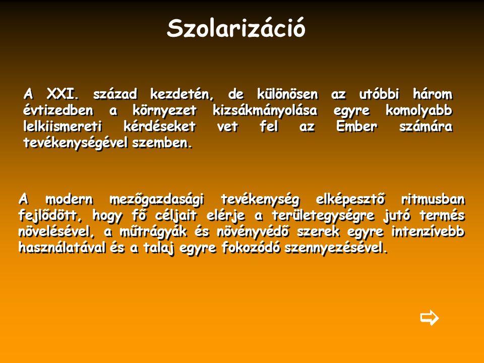 Szolarizáció A XXI.