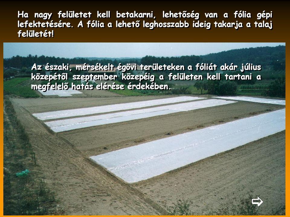  Ha nagy felületet kell betakarni, lehetőség van a fólia gépi lefektetésére. A fólia a lehető leghosszabb ideig takarja a talaj felületét! Az északi,
