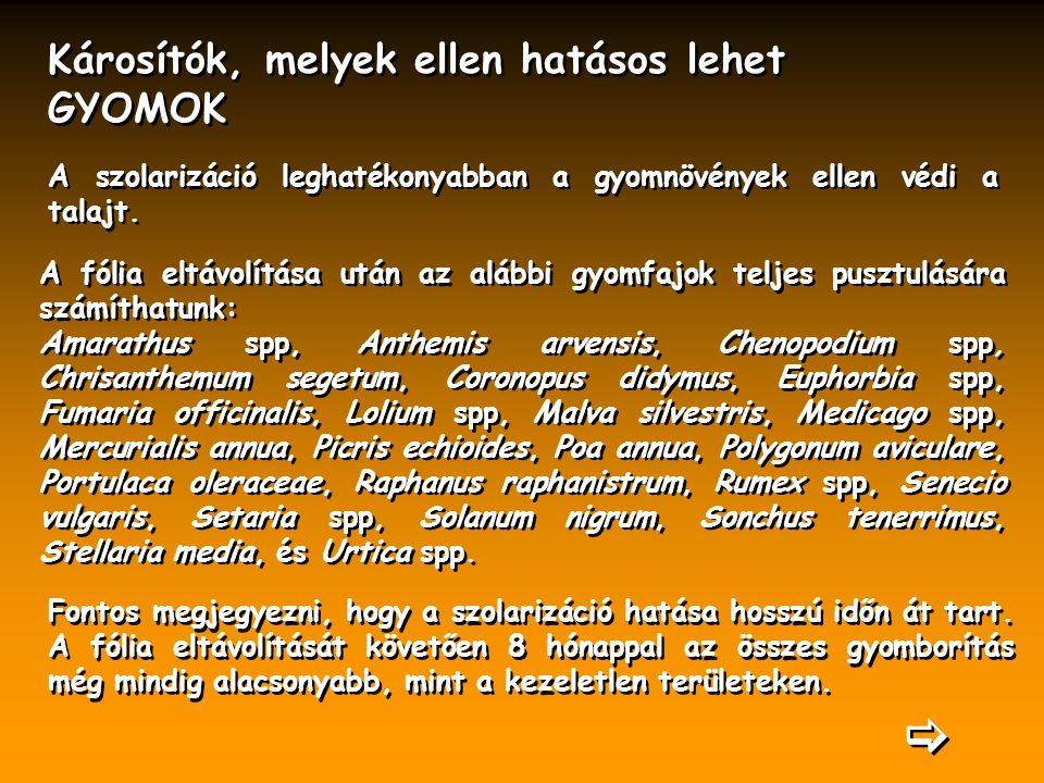 Károsítók, melyek ellen hatásos lehet GYOMOK Károsítók, melyek ellen hatásos lehet GYOMOK A fólia eltávolítása után az alábbi gyomfajok teljes pusztulására számíthatunk: Amarathus spp, Anthemis arvensis, Chenopodium spp, Chrisanthemum segetum, Coronopus didymus, Euphorbia spp, Fumaria officinalis, Lolium spp, Malva silvestris, Medicago spp, Mercurialis annua, Picris echioides, Poa annua, Polygonum aviculare, Portulaca oleraceae, Raphanus raphanistrum, Rumex spp, Senecio vulgaris, Setaria spp, Solanum nigrum, Sonchus tenerrimus, Stellaria media, és Urtica spp.