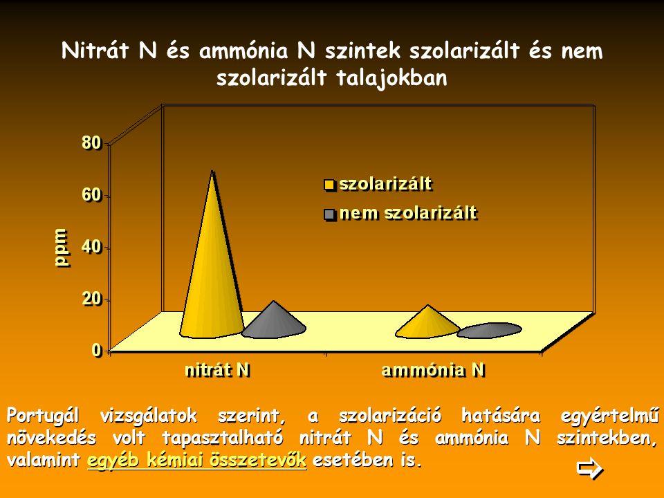 Nitrát N és ammónia N szintek szolarizált és nem szolarizált talajokban Portugál vizsgálatok szerint, a szolarizáció hatására egyértelmű növekedés volt tapasztalható nitrát N és ammónia N szintekben, valamint egyéb kémiai összetevők esetében is.egyéb kémiai összetevők Portugál vizsgálatok szerint, a szolarizáció hatására egyértelmű növekedés volt tapasztalható nitrát N és ammónia N szintekben, valamint egyéb kémiai összetevők esetében is.egyéb kémiai összetevők  