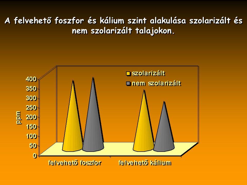 A felvehető foszfor és kálium szint alakulása szolarizált és nem szolarizált talajokon.