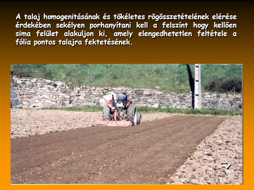 A talaj homogenitásának és tökéletes rögösszetételének elérése érdekében sekélyen porhanyítani kell a felszínt hogy kellően sima felület alakuljon ki,