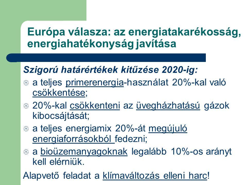 Európa válasza: az energiatakarékosság, energiahatékonyság javítása Szigorú határértékek kitűzése 2020-ig:  a teljes primerenergia-használat 20%-kal való csökkentése;  20%-kal csökkenteni az üvegházhatású gázok kibocsájtását;  a teljes energiamix 20%-át megújuló energiaforrásokból fedezni;  a bioüzemanyagoknak legalább 10%-os arányt kell elérniük.