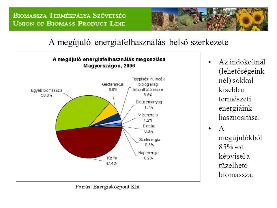 A megújuló energiafelhasználás belső szerkezete Az indokoltnál (lehetőségeink nél) sokkal kisebb a természeti energiáink hasznosítása.