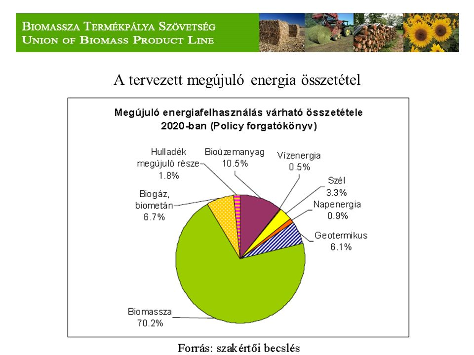 A tervezett megújuló energia összetétel
