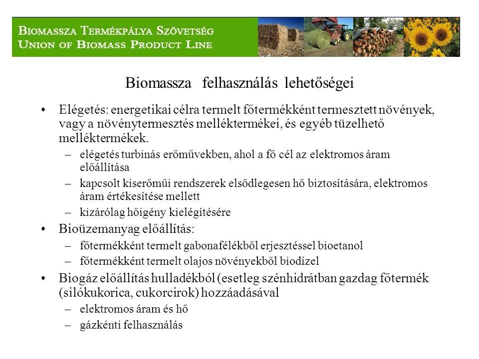 Biomassza felhasználás lehetőségei Elégetés: energetikai célra termelt főtermékként termesztett növények, vagy a növénytermesztés melléktermékei, és egyéb tüzelhető melléktermékek.