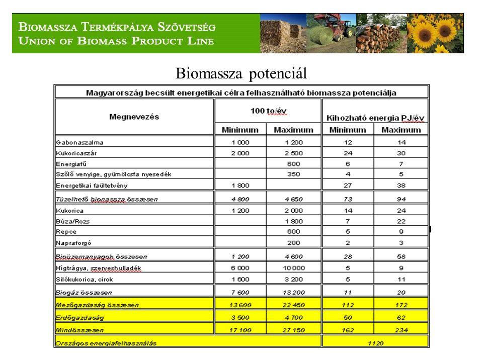 Biomassza potenciál