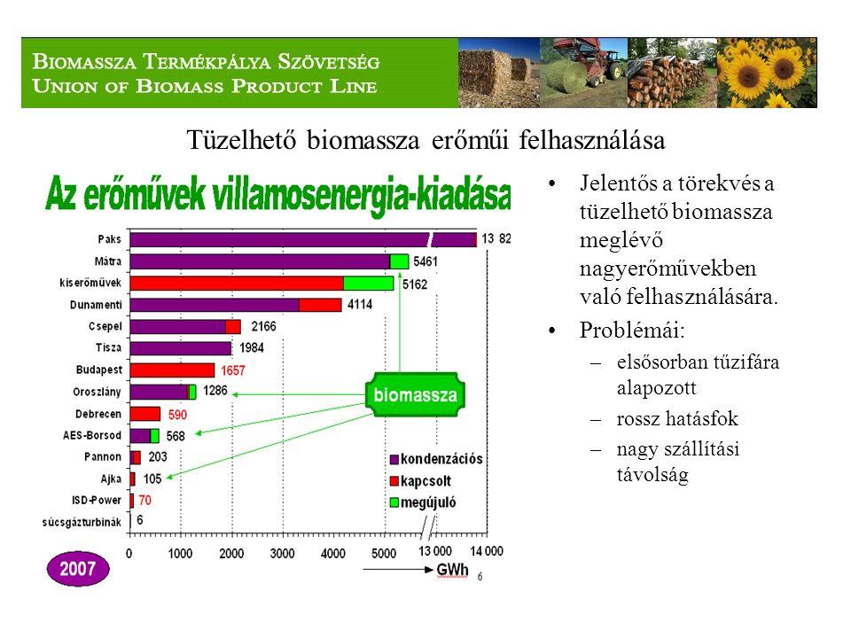 Tüzelhető biomassza erőműi felhasználása Jelentős a törekvés a tüzelhető biomassza meglévő nagyerőművekben való felhasználására.
