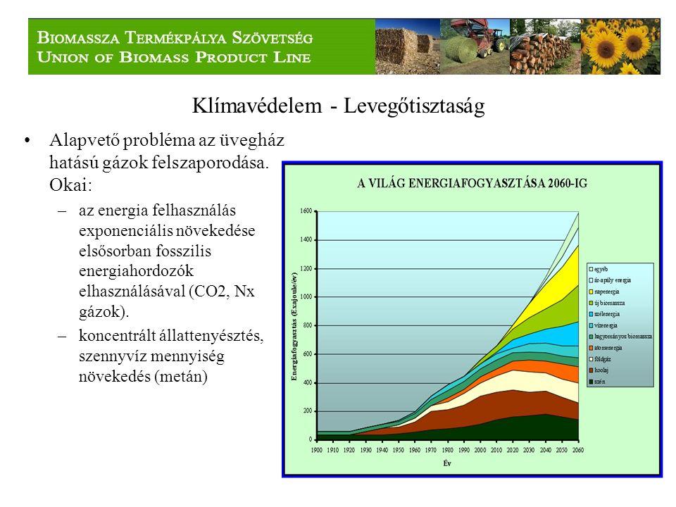 A tüzelhető biomassza A tüzelhető biomassza potenciálnak több mint felét a mezőgazdasági termelés adja, ugyanakkor ennek a felhasználása minimális.