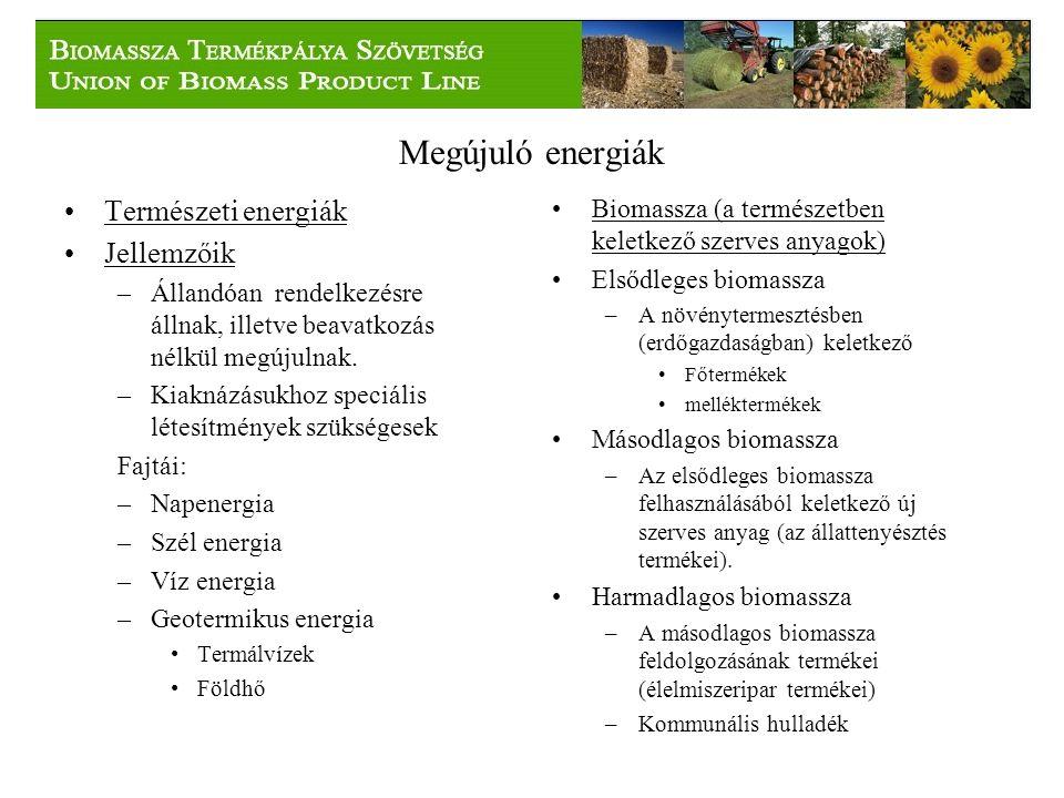Megújuló energiák Természeti energiák Jellemzőik –Állandóan rendelkezésre állnak, illetve beavatkozás nélkül megújulnak.