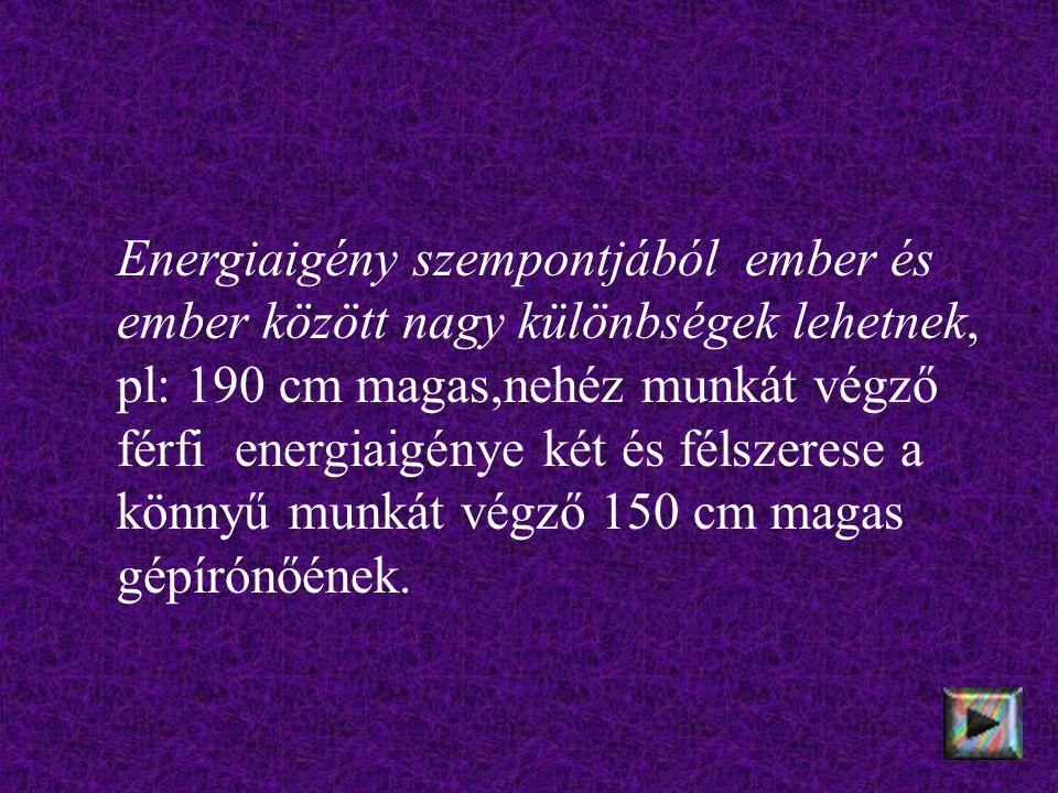 Energiaigény szempontjából ember és ember között nagy különbségek lehetnek, pl: 190 cm magas,nehéz munkát végző férfi energiaigénye két és félszerese a könnyű munkát végző 150 cm magas gépírónőének.