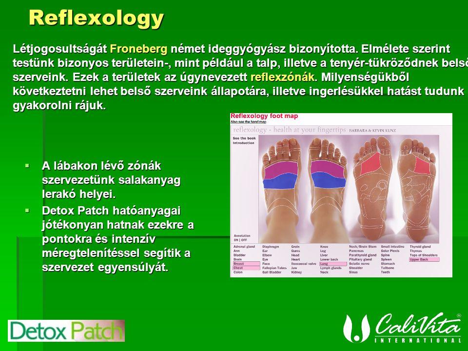 Reflexology  A lábakon lévő zónák szervezetünk salakanyag lerakó helyei.