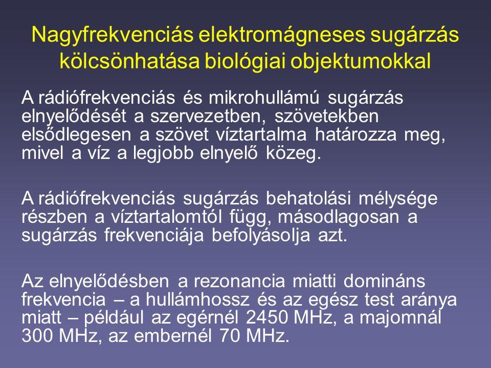Nagyfrekvenciás elektromágneses sugárzás kölcsönhatása biológiai objektumokkal A rádiófrekvenciás és mikrohullámú sugárzás elnyelődését a szervezetben