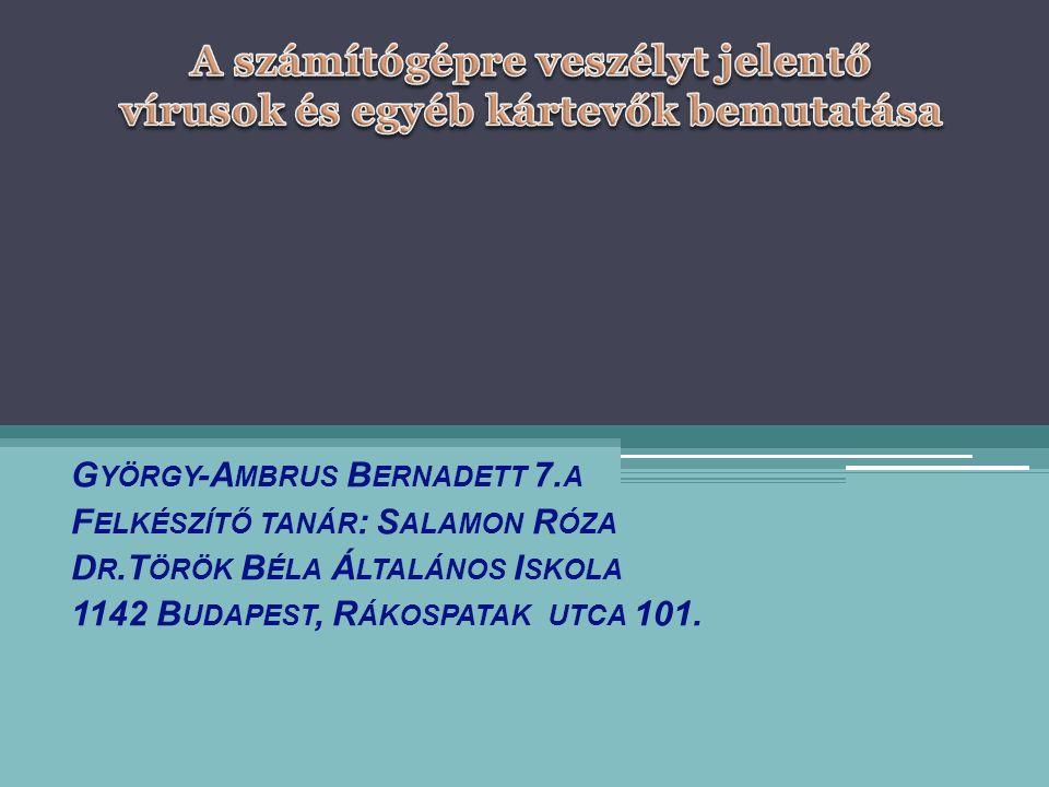 G YÖRGY -A MBRUS B ERNADETT 7.