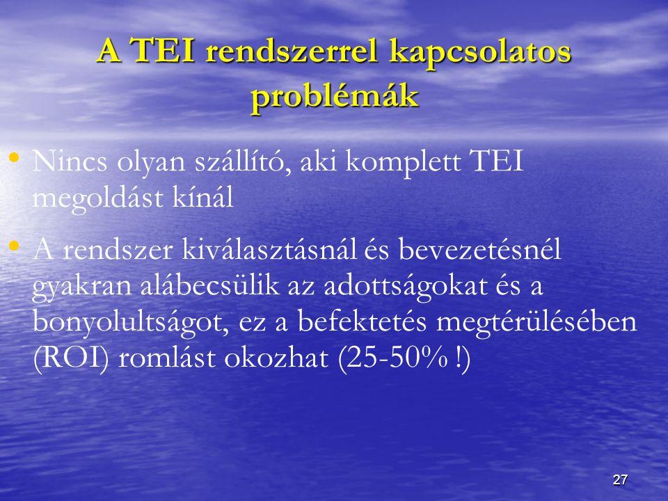 27 A TEI rendszerrel kapcsolatos problémák Nincs olyan szállító, aki komplett TEI megoldást kínál A rendszer kiválasztásnál és bevezetésnél gyakran alábecsülik az adottságokat és a bonyolultságot, ez a befektetés megtérülésében (ROI) romlást okozhat (25-50% !)