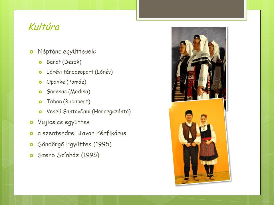  Néptánc együttesek:  Banat (Deszk)  Lórévi tánccsoport (Lórév)  Opanke (Pomáz)  Sarenac (Medina)  Taban (Budapest)  Veseli Santovčani (Hercegszántó)  Vujicsics együttes  a szentendrei Javor Férfikórus  Söndörgő Együttes (1995)  Szerb Színház (1995) Kultúra
