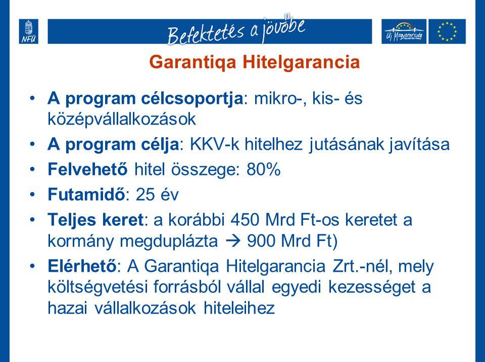 Garantiqa Hitelgarancia A program célcsoportja: mikro-, kis- és középvállalkozások A program célja: KKV-k hitelhez jutásának javítása Felvehető hitel összege: 80% Futamidő: 25 év Teljes keret: a korábbi 450 Mrd Ft-os keretet a kormány megduplázta  900 Mrd Ft) Elérhető: A Garantiqa Hitelgarancia Zrt.-nél, mely költségvetési forrásból vállal egyedi kezességet a hazai vállalkozások hiteleihez