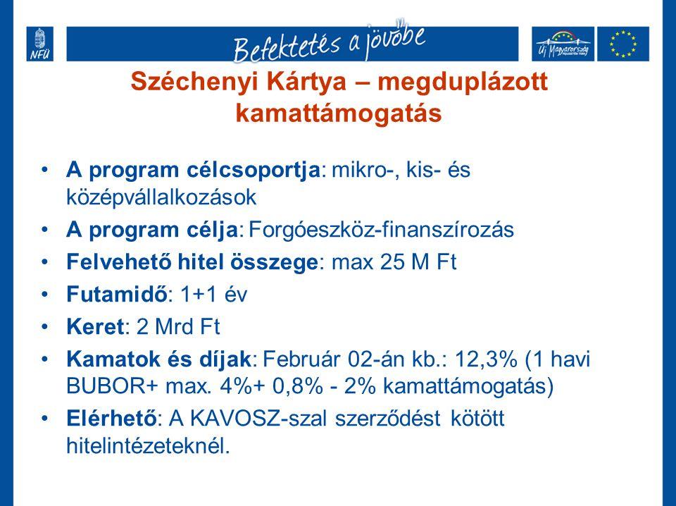 Széchenyi Kártya – megduplázott kamattámogatás A program célcsoportja: mikro-, kis- és középvállalkozások A program célja: Forgóeszköz-finanszírozás Felvehető hitel összege: max 25 M Ft Futamidő: 1+1 év Keret: 2 Mrd Ft Kamatok és díjak: Február 02-án kb.: 12,3% (1 havi BUBOR+ max.