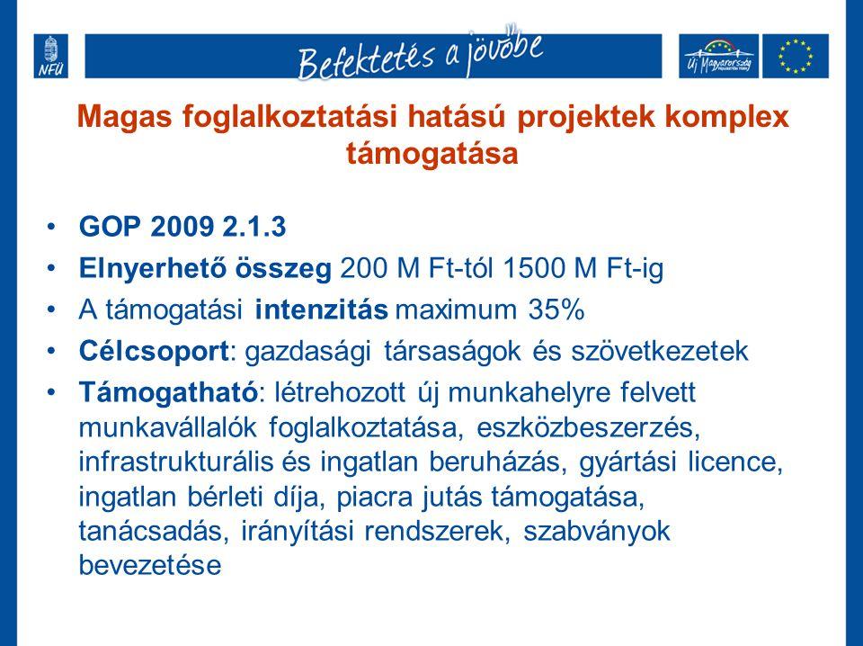 Magas foglalkoztatási hatású projektek komplex támogatása GOP 2009 2.1.3 Elnyerhető összeg 200 M Ft-tól 1500 M Ft-ig A támogatási intenzitás maximum 35% Célcsoport: gazdasági társaságok és szövetkezetek Támogatható: létrehozott új munkahelyre felvett munkavállalók foglalkoztatása, eszközbeszerzés, infrastrukturális és ingatlan beruházás, gyártási licence, ingatlan bérleti díja, piacra jutás támogatása, tanácsadás, irányítási rendszerek, szabványok bevezetése