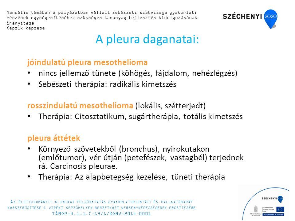 A pleura daganatai: jóindulatú pleura mesothelioma nincs jellemző tünete (köhögés, fájdalom, nehézlégzés) Sebészeti therápia: radikális kimetszés rosszindulatú mesothelioma (lokális, szétterjedt) Therápia: Citosztatikum, sugártherápia, totális kimetszés pleura áttétek Környező szövetekből (bronchus), nyirokutakon (emlőtumor), vér útján (petefészek, vastagbél) terjednek rá.