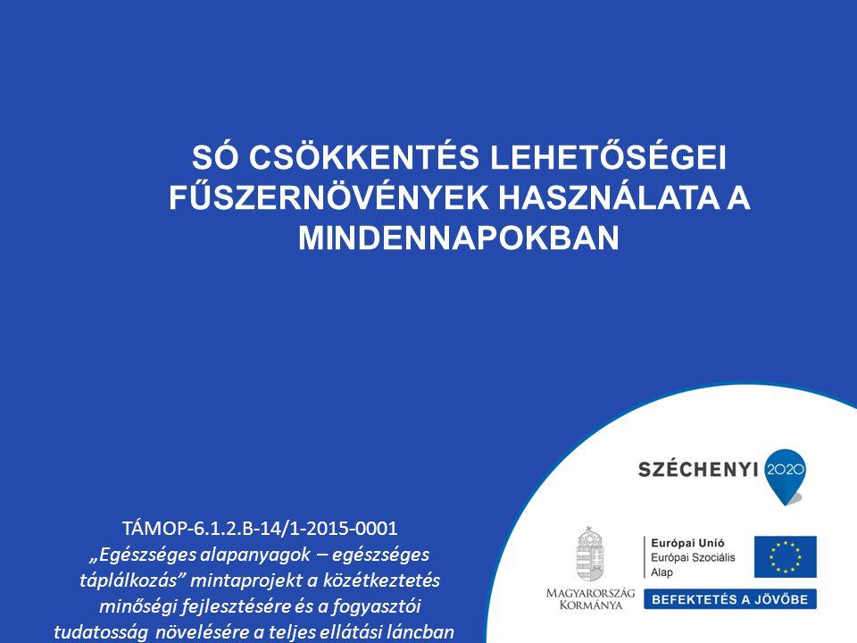 """SÓ CSÖKKENTÉS LEHETŐSÉGEI FŰSZERNÖVÉNYEK HASZNÁLATA A MINDENNAPOKBAN TÁMOP-6.1.2.B-14/1-2015-0001 """"Egészséges alapanyagok – egészséges táplálkozás"""" mi"""