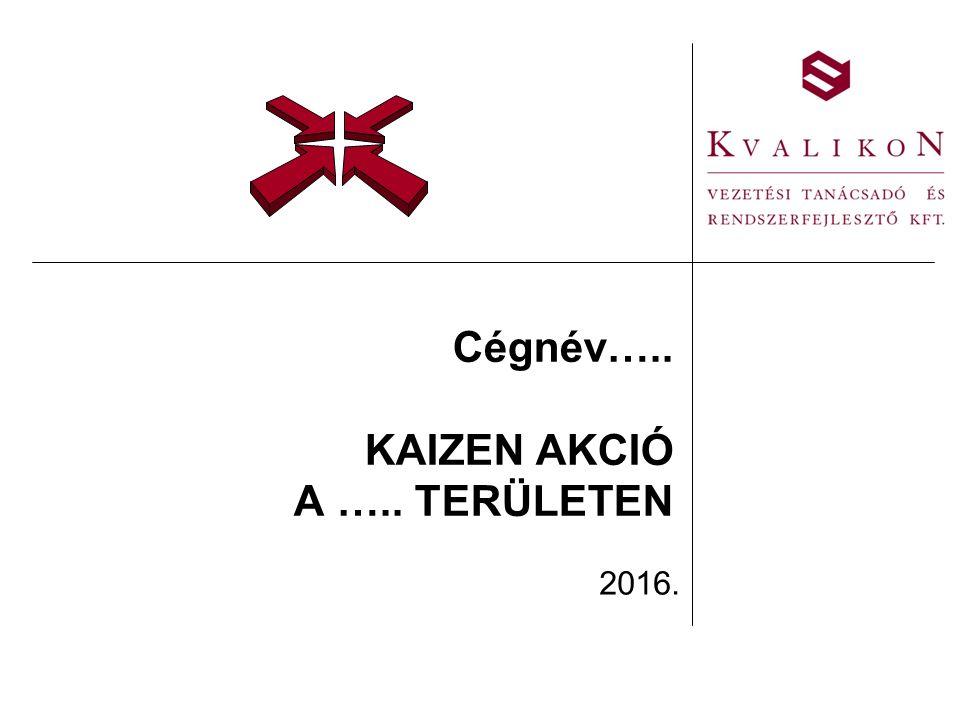 Cégnév….. KAIZEN AKCIÓ A ….. TERÜLETEN 2016.