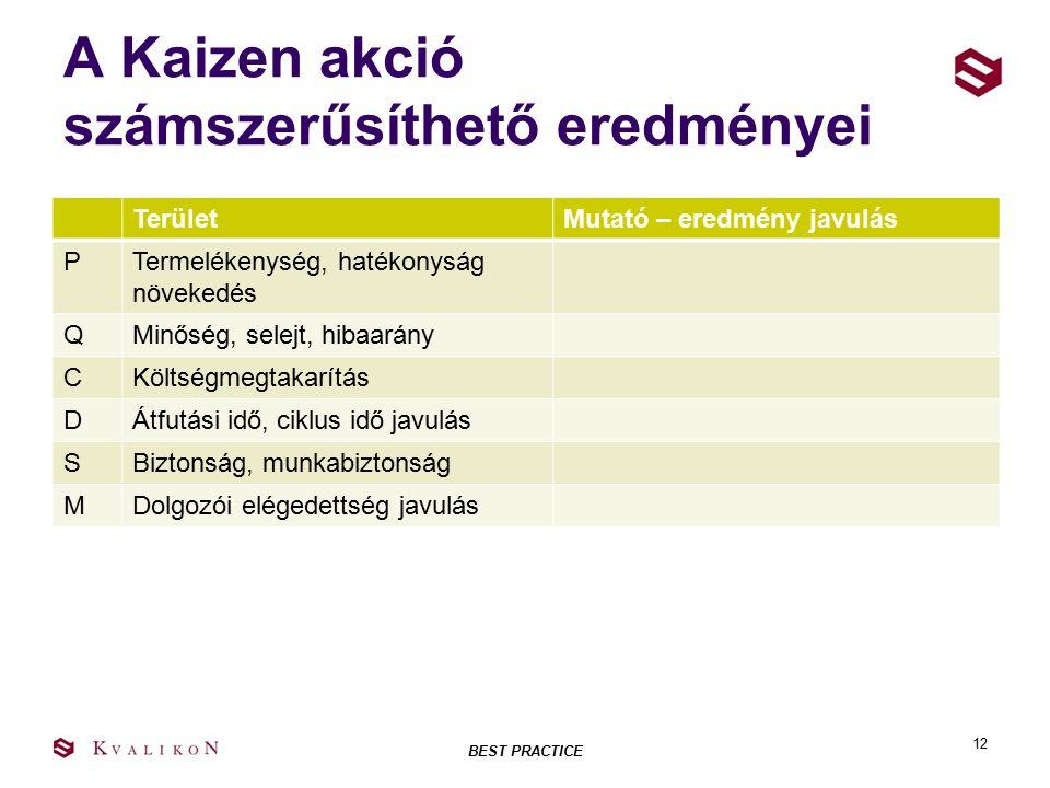 A Kaizen akció számszerűsíthető eredményei TerületMutató – eredmény javulás PTermelékenység, hatékonyság növekedés QMinőség, selejt, hibaarány CKöltségmegtakarítás DÁtfutási idő, ciklus idő javulás SBiztonság, munkabiztonság MDolgozói elégedettség javulás BEST PRACTICE 12