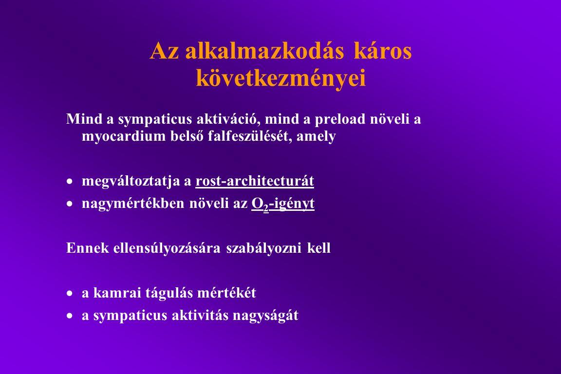 Az alkalmazkodás káros következményei Mind a sympaticus aktiváció, mind a preload növeli a myocardium belső falfeszülését, amely  megváltoztatja a ro
