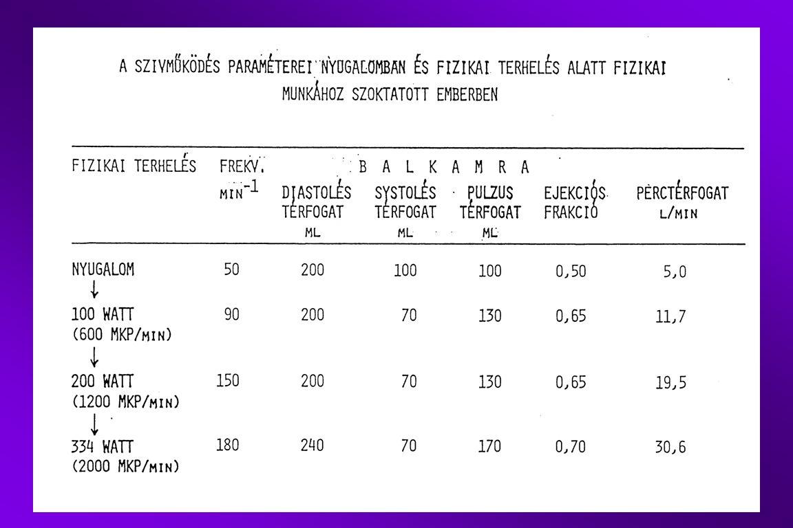 Determinants of cardiac performance and blood pressure