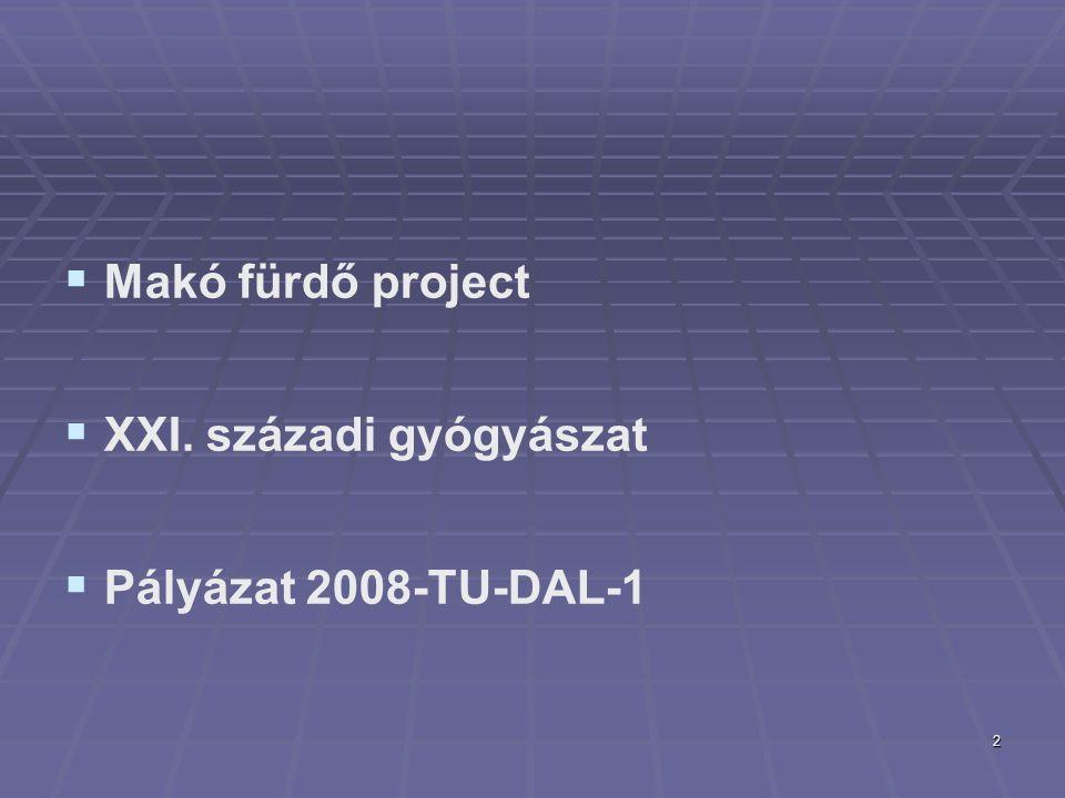 2   Makó fürdő project   XXI. századi gyógyászat   Pályázat 2008-TU-DAL-1