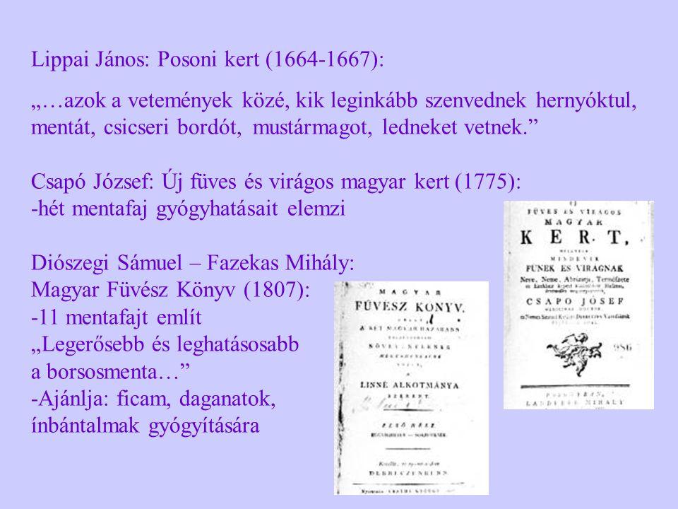 """Lippai János: Posoni kert (1664-1667): """"…azok a vetemények közé, kik leginkább szenvednek hernyóktul, mentát, csicseri bordót, mustármagot, ledneket v"""