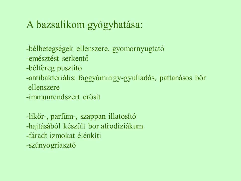 A bazsalikom gyógyhatása: -bélbetegségek ellenszere, gyomornyugtató -emésztést serkentő -bélféreg pusztító -antibakteriális: faggyúmirigy-gyulladás, p