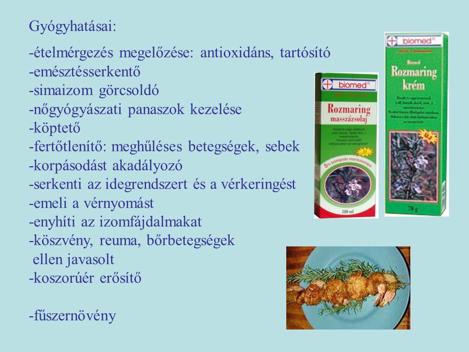 Gyógyhatásai: -ételmérgezés megelőzése: antioxidáns, tartósító -emésztésserkentő -simaizom görcsoldó -nőgyógyászati panaszok kezelése -köptető -fertőt